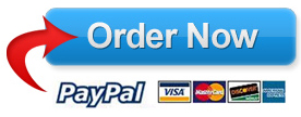 THE FLIP PayPal