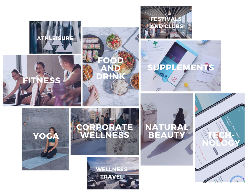 Wellness Industry Categories