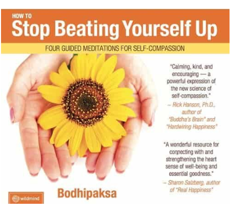 How to Stop Beating Yourself Up Cover