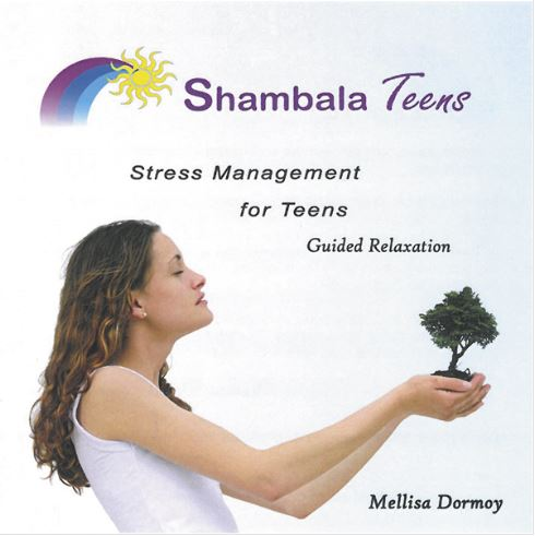 Shambala Teens - Stress