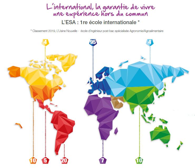 Rayonnement international